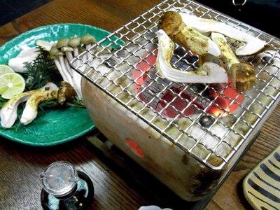 Matsutake_rikyuan