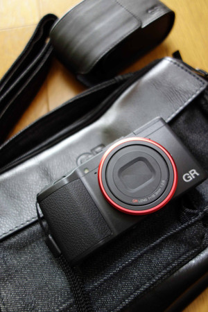 Gr_red_ring_bag