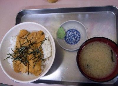 Akibaya_unidon