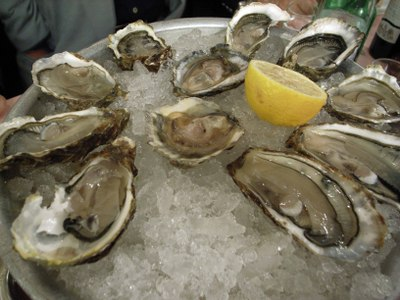 No1oyster