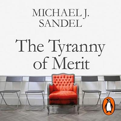 The-tyranny-of-merit